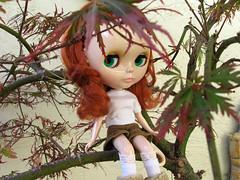 Climb a tree!