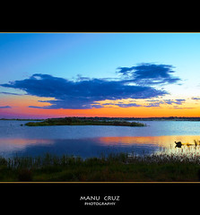 Lago de la dehesa... la belleza de tus reflejos (MANU CRUZ ) Tags: espaa orange bird love sol beautiful digital wonderful arbol atardecer photography photo sevilla guadalquivir agua flickr foto arboles great paisaje olympus movimiento andalucia best national ave pajaros cielo fotos pato nubes reflejo atardeceres pajaro fotografia manu naranja marisma olas zuiko brilliant nube ultimas interesante masterpiece reflejos dorado buena vuelo foton composicion maravilla doana diez charca fantastica e510 iberico zuikodigital flickrsbest colorphotoaward aplusphoto theunforgettablepictures colourartaward vosplusbellesphotos artofimages vamdiessel bestcapturesaoi manucruz
