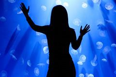 . (luce_eee) Tags: light woman water silhouette jellyfish blu dream portfolio acqua controluce fiamma corpi canon85mmf18 aureliaaurita acquariodigenova canon400d luceeee rinaciampolillo medusaquadrifoglio labissodellemeduse esorcizzareunapaura ultimoepisodio wwwrinaciampolillocom