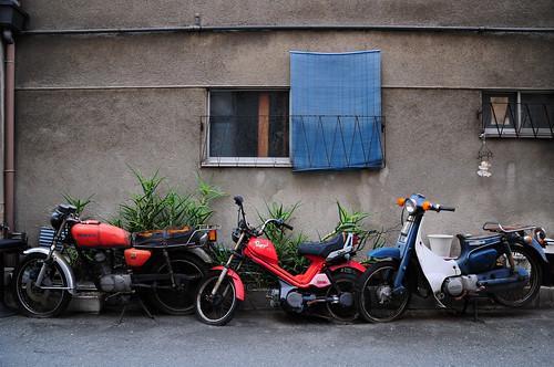 Plant Bikes