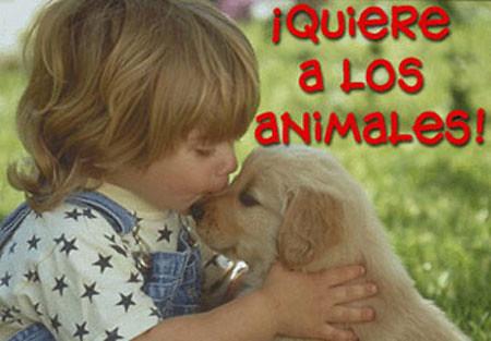 Quiere a los Animales