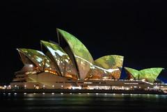 Stunning cammo Sydney Opera House