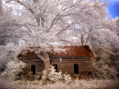 Rural Dream (evanleavitt) Tags: county wood roof red house abandoned home rural ga georgia ir tin empty country rusty surreal atmosphere olympus jackson weathered infra dreamscape deacy e510 nonhdr