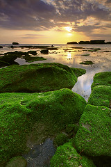 Think Green (tropicaLiving - Jessy Eykendorp) Tags: longexposure light sunset sea sky bali seascape seaweed beach nature water silhouette clouds indonesia landscape coast rocks shoreline tanahlot canggu efs1022mmf3545usm thinkgreen outdoorphotography canoneos50d tropicaliving hitechfilters mengeningbeach rawproccessedwithdigitalphotopro tiffproccessedwithadobephotoshopcs3
