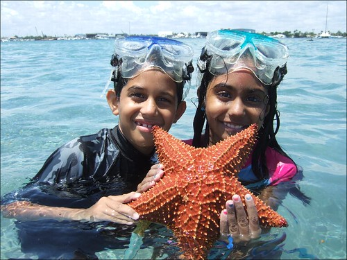 Armaan and Meher with a Cushion Starfish