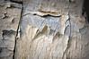 Wabi Sabi (MMGoode) Tags: wood old macro peeling paint decay ruin hero winner aged thumbsup bigmomma gamewinner pfosilver herowinner pregamewinner