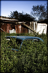 Decay - revised (Uncle Berty) Tags: uk blue england green car austin decay nettles berty brill bucks decaying smalls hardlight hp18 robfurminger