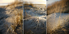 It felt like I was seeing it for the first time (~gina) Tags: light sand triptych wind time oregoncoast beachgrass ilikegrass