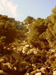 Taken while Scouting (egotoagrimi) Tags: stream ikaria oaks cascade radi confluent larisses voutsides megalofos