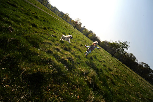 Phoenix Park Fun in the Sun