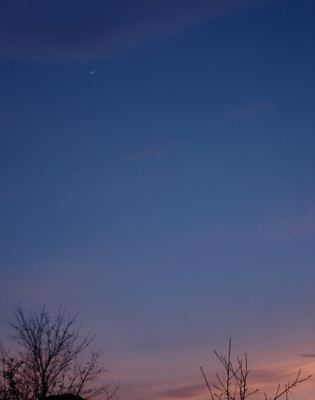 Crescent Moon 012