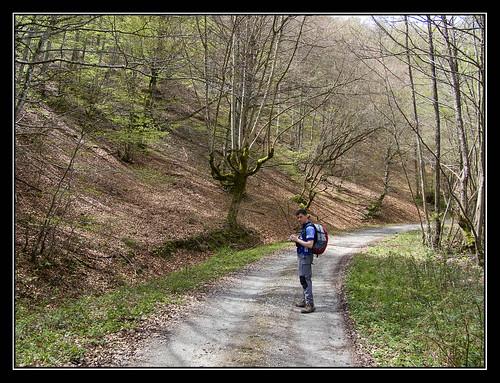 Camino que remonta el Barranco de Zuriain