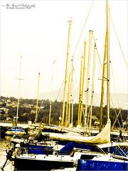 -    ..   - (- AlAnoud -) Tags: blue light yellow canon boats bay boat day geneva yacht swiss lac   g9          alanoud