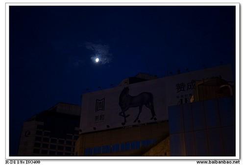 moon-horse-7348