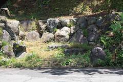 白山神社の龍神池