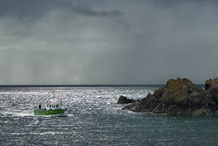 Home from the Sea (Dan Baillie) Tags: light sea summer sunlight seagulls water rain clouds boat fishing rocks waves gulls portpatrick shimmer the puddock danbaillie bailliephotographycouk bailliephotography wigtownshirephotographer dumfriesandgallowayphotography