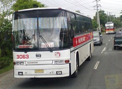 Euro vs. Euro (Api II =)) Tags: bus rabbit euro victory liner philippine 3063 vli prbl ndpc