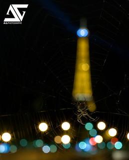 Eiffel trapped