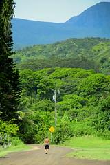 Paseando hacia Hana Maui Hawaii (Alfredi) Tags: road mountain hawaii nikon camino maui hana lahaina d90