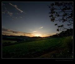 Sunset on Coffee Farm (Redux III) (Boby Pirovics) Tags: sunset boby braganapaulista alpha700 pirovics bobypirovics