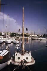 Erbse in Cagliari, 1994 (Bomika) Tags: erbse