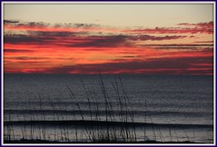 NC - Carolina Beach - Day Two (scott185 (the original)) Tags: sunrise nc northcarolina atlanticocean carolinabeach seaoats newhanovercounty platinumphoto