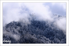 kizdere - Rize ( alemdag ) Tags: winter snow turkey landscape interestingness bravo trkiye turkiye natura about mavi mehmet kar gmt gkyz rize yeil k sanat fotoraf doa tabiat renkler alemda alemdag flickrsbest abigfave colorphotoaward theunforgettablepictures nikond300 mehmetalemda alemdagqualityonlyclub saariysqualitypictures worldclassnaturephotosni rzgarlky