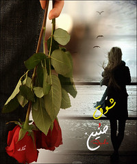 (Jooreh-el-sharkia) Tags: