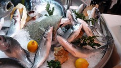 Fish display at restaurant, Milan, Italy.JPG
