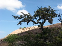 Texas: Enchanted Rock