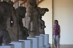 Statues From Isla Zapatera