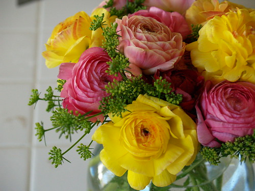 Ranunculus and parsley flowers