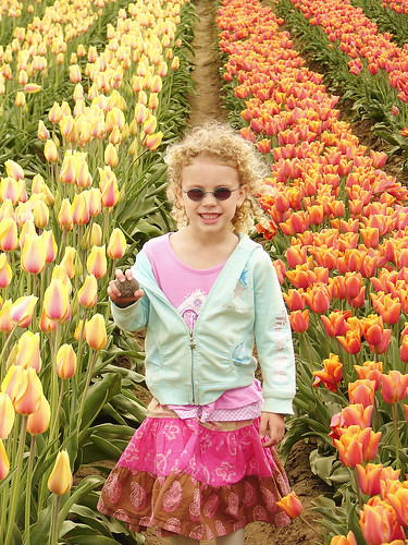 Sydney in the Tulips