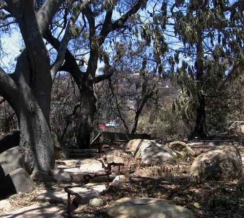 Santa Barbara Botanic Garden Upper Garden