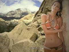 Coleccion Bikini (11)