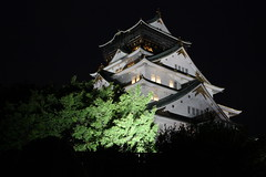 Osaka Castle (), Japan (nathalie.kwok) Tags: travel holiday japan night canon   osaka vacaciones japon  osakacastle japn  450d lesvacances levoyage