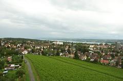 Aussich vom Bismarkturm in Konstanz mit Weinberg