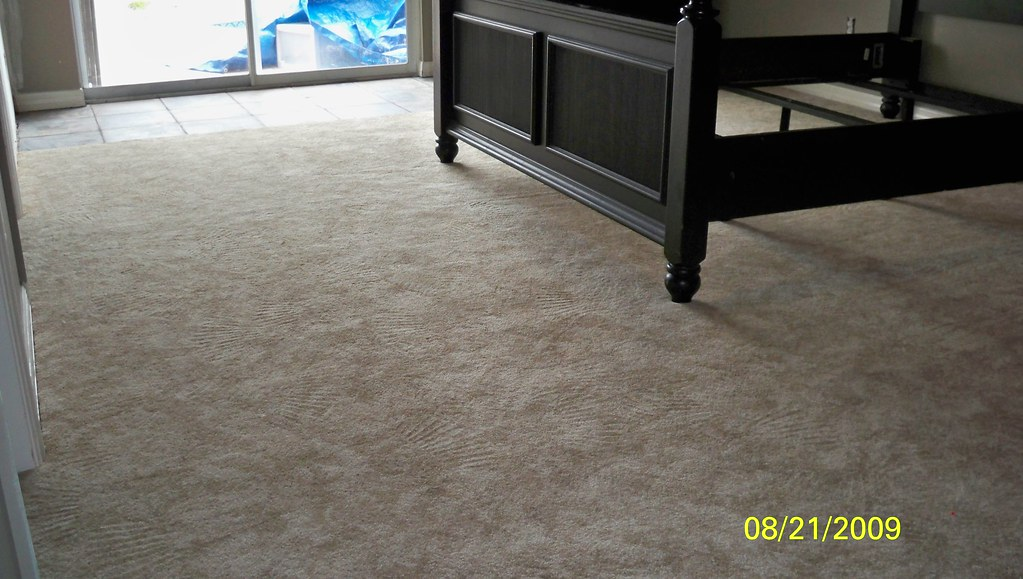 Active Carpet--Spirited Steps
