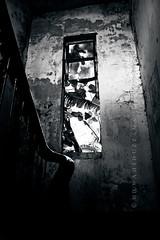 (wahid galib_dead head) Tags: light white black window nikon bangladesh strais d40 blackwhitephotos munshigonj maowa