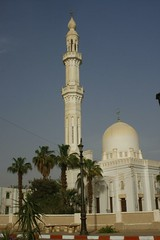 (688) Oase Kharga (avalon20_(mac)) Tags: africa travel sahara geotagged egypt oasis 500 misr eos40d schulzaktivreisen