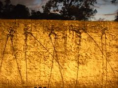AMAI (Joo Martins Neto) Tags: de amigo graffiti arte grafiti pernas martins pau joo perna pixo letra neto cartola homenagens escrita bonequinhos