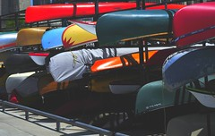 park hot june sunday cne canoes lakeontario 5th finally