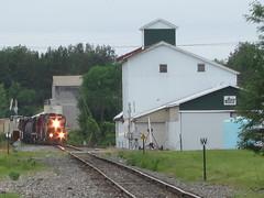 wny&pa 160 (Fan-T) Tags: new york railroad cambridge west train pennsylvania elevator grain el pa springs western end erie 630 alco c630 wnypa