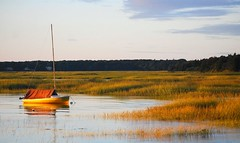 Boat Meadow (mimicapecod) Tags: boat capecod eastham worldclass marshgrasses justonelook inspiredbylove goldengrass topshots barcheboats mywinners impressedbeauty diamondclassphotographer flickrdiamond citrit brilliant~eye~jewel concordians boatmeadow worldsbestdazzlingshots photographersgonewild picturepoemsflickrsbestsecret pbhotographersgonewild