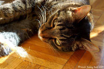 Kiki+Sunbathing+2