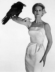 tippi hedron with raven