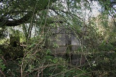 sept 019 (Landyman Photography) Tags: pillbox cheshunt leavalleypark batroost searchlightcontrolpost