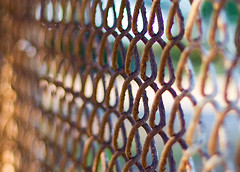 more of the fence (rlonas) Tags: fence dof bokeh hbw pfogold