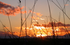 Favourite time (Faddoush) Tags: sunset sky grass nikon silhouettes hellas greece favourite faddoush akkru