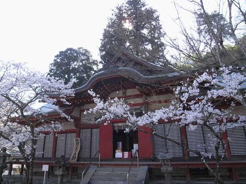 09-04-10【桜】@談山神社-09
